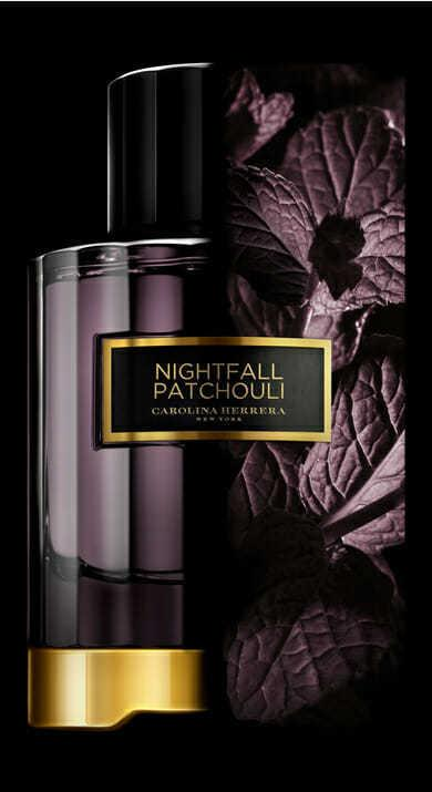 Carolina Herrera Nightfall Patchouli For Unisex Eau De Parfum 100ML