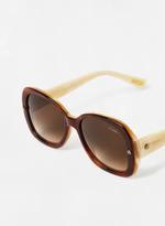 Women's Oval Shape DESIGNER Sunglasses Brown Frame Lens Brown SLN500-55-7MBD