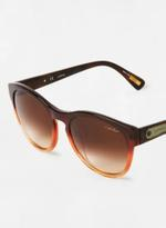 Unisex Aviator Sunglasses with designed frmaes Brown