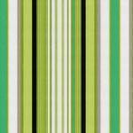 XIA ROLEX STRIPE GREEN