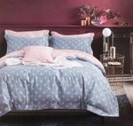 Four Season Floral Printed Double Bedsheet Light Blue
