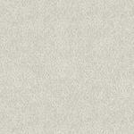 Soft Velvet Off White Texture Upholstery Fabric