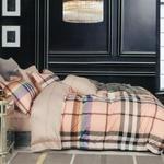 Four Season Burberry Printed Double Bedsheet Multicolor