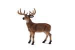 Mojo White Tailed Deer Buck
