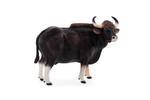Mojo Gaur Bull