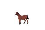 Mojo Arabian Mare In Foal