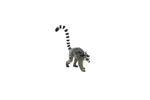 Mojo Lemur With Baby