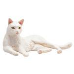 Mojo Cat Lying White New For 2019