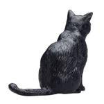 Mojo Cat Sitting Black New For 2019