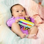 Baby B. Spin, Rattle & Roll Toy
