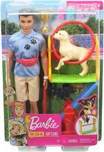 Barbie Ken Career Doll Playset
