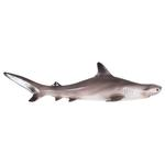 National Geographic Hammerhead Shark
