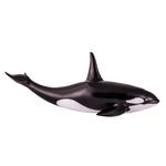 National Geographic Orca