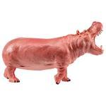 National Geographic Hippopotamus