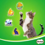 Kitekat Mackerel Flavour Dry Adult Cat Food 7kg