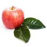 Apple - Indian