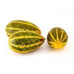 Cucumber - Mangalore/Sambhar Velleri