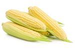 Sweet Corn/Cholam