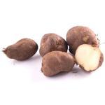 Potato - Chinese (കൂർക്ക)