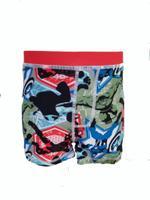 Avengers Boy's Swimwear Trunk,Multicolor,HWGLSWAV307