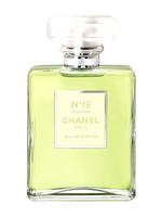 Chanel No19 Poudre For Women Eau De Parfum 100ML