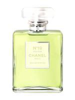 Chanel No19 Poudre For Women Eau De Parfum 100ML