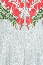 Potion V-Neck Dress