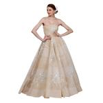 Amit GT Beige Embroidered Ball Gown (AGTVK01)