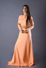 Plush Culture Orange gown with zardosi handwork on waist and elbow (GN_3)
