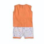 Smart Baby Baby Boys 2 Piece Set,Orange-BIGCB216AIO