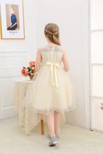 Le Crystal Girls Party Dress , Beige - GEGS21DG8026
