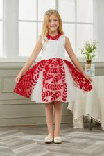 Le Crystal Girls Party Wear Dress,Red,GEGSS2020160