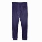 Nexgen Juniors Boys Jogger Style Pant, Blue-SIMG4362B