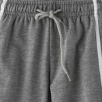 Zebra Crossing Boys Track Pant,Grey Milenge - VCG052COL3
