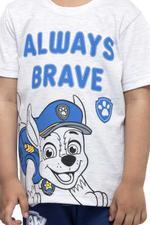 Paw Patrol Boys T-shirt , Grey Melange - HWGLS21TOD08