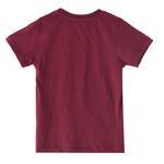 Nexgen Juniors Boys T-shirt,Maroon,VCG041COL4