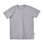 Genius Boys T-Shirt , Grey Melange- SSG17189COL6