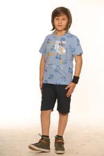 Nexgen Juniors Boys T-Shirt , Sky Melange- SSG17169