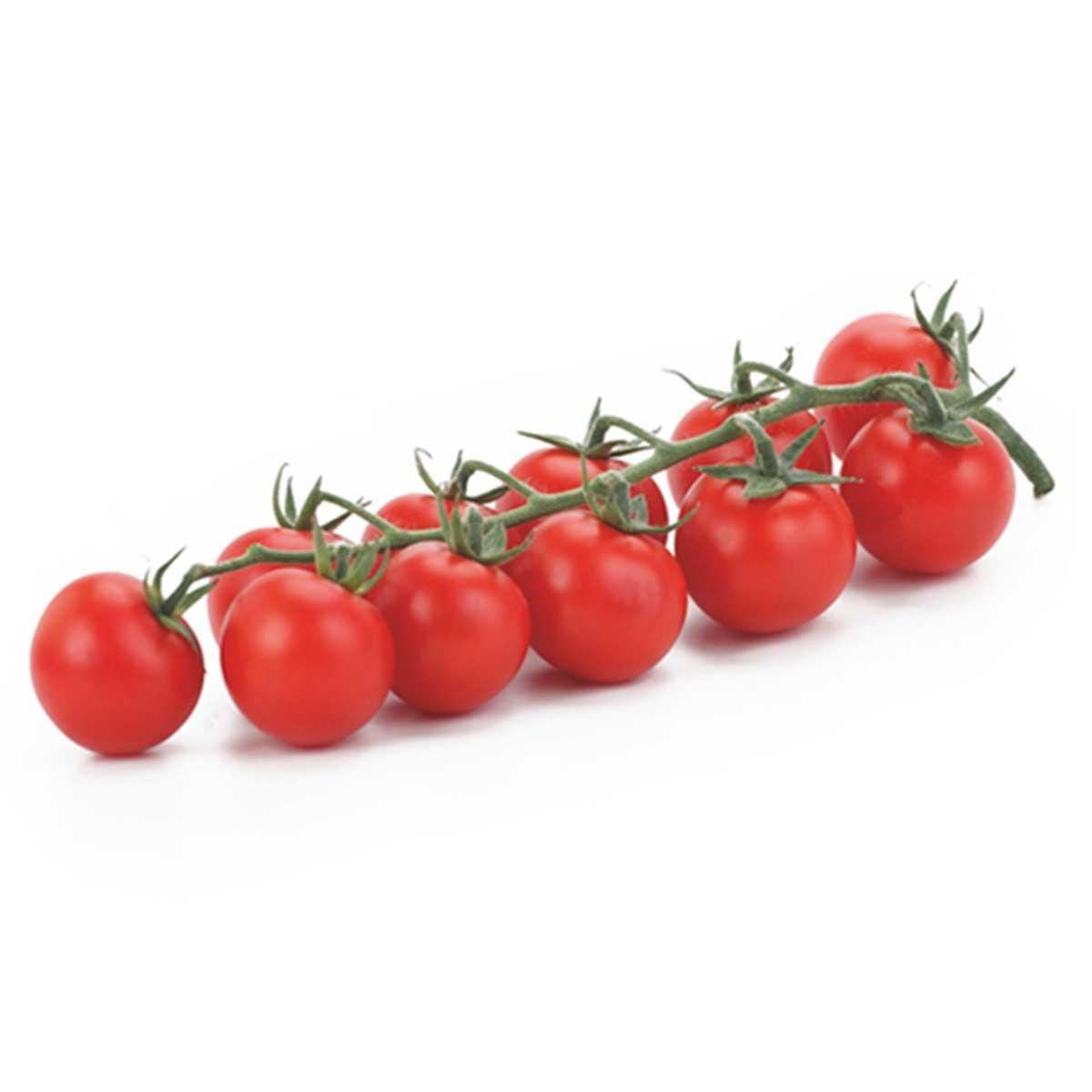 Tomato Cherry Bunch